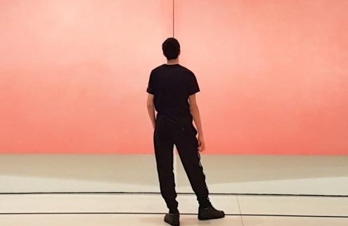 lezioni di storia dell'arte contemporanea